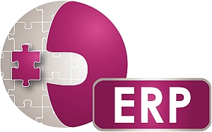 erp-enterprise-resource-planing-audit