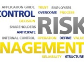 control-risc-management-audit-office-galati